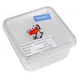 Magnet rdeča strupena žaba v embalaži za žuželke