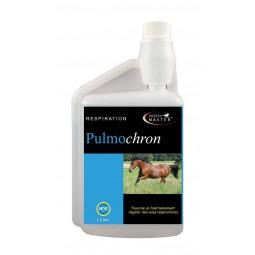 HORSE MASTER PULMOCHRON