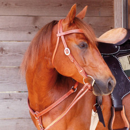 Alamo Saddlery - Western Bridle Elite Basket