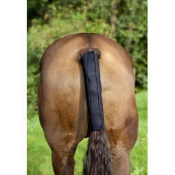 Soft Tailguard