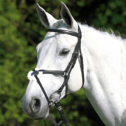 Sale - Wembley X-Line Bridle Santa Cruz, black, size: full